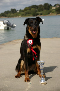 Cas pozing in Brittany with cup for 3rd place in intermediate class at National d'Elevage 2011